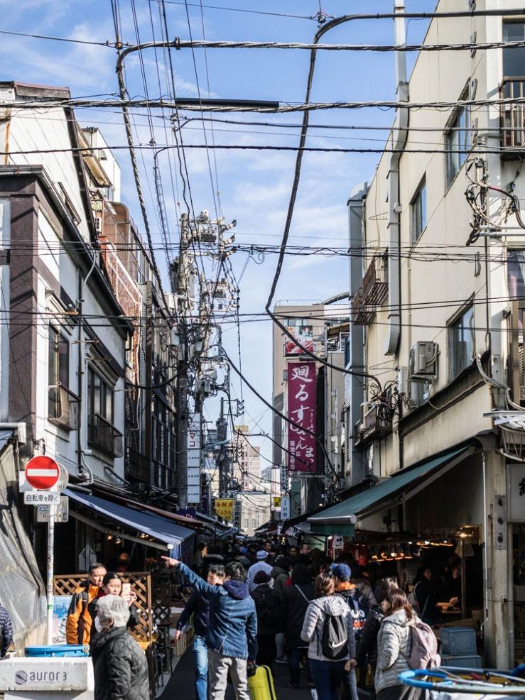 pb300655-japan_tokyo_tsukiji-fish-market